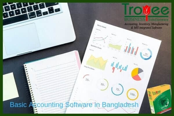 Basic Accounting Software in Bangladesh Troyee